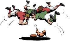 Les coqs porte-bonheur du XV de France victimes de