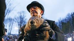 Durée de l'hiver: les marmottes ne s'entendent