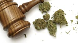 Canada's Lawyers and Judges Need To Brush Up On Marijuana