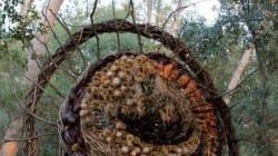 Ces sculptures végétales sont cachées dans des forêts