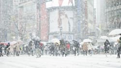 「東京 雪」の画像検索結果