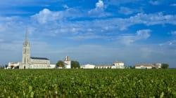 Filets de rouget à la niçoise: le vin qui va