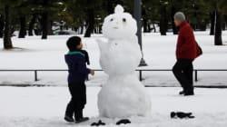 Ils ont construit 1585 bonshommes de neige en une