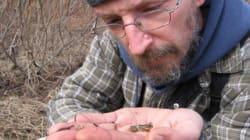 Conservation de la Faune: vous me lancez de la poudre aux yeux avec votre prix