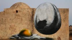 ROA in Tunisia e Brasile -- Nuovi spazi per la sua natura