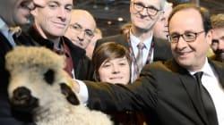 Le salon de l'Agriculture inauguré par un François Hollande