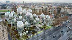 Des architectes imaginent ce qui pourrait pousser porte