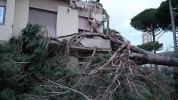 Maltempo, piogge e temporali sull'Italia: Toscana la più
