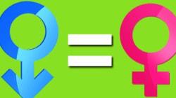 Igualdade de gênero faria bem ao