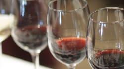 10 razões para um vinho ser