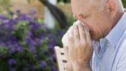 6 conseils pour calmer les allergies aux