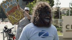 No Yeti, No Bigfoot In The Himalayas: