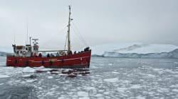 Environnement : Un nouveau record de fonte de la glace en mer