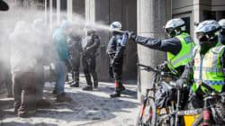 Anarchopanda porte en appel sa victoire contre le règlement P-6 - La