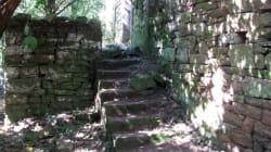 EN IMAGES - Une cabane pour Nazis retrouvée dans la forêt