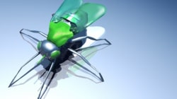 Drones insectes, super-oreilles, cape d'invisibilité... quand la science s'inspire de la