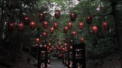 Foresta Lumina : une offre bonifiée pour l'été