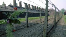 Auschwitz: ecco perché serve ancora la