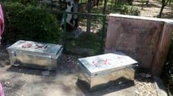 Inde: un couple retrouvé mort dans des