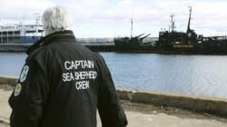 Paul Watson, da Sea Shepherd: 'Quando perguntam minha cidadania eu respondo: