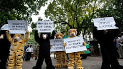 Greenpeace India's Registration Suspended, Bank Accounts