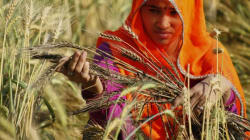 Agra Mental Hospital Opens Special Cell For Farmers In