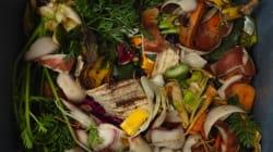 15 déchets alimentaires à ne jamais