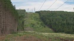 Opposition à une ligne d'Hydro-Québec: Québec va de