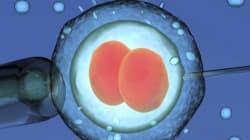 Chineses manipulam embriões pela primeira vez e despertam furor