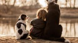 Ce jeune garcon et ses trois chiens vont vous faire