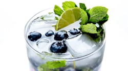 Cheers! 24 Of The Best Mojito Recipes For