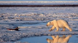 Global Warming: Do Canadians Still
