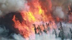 Les trains déclenchent un feu de forêt tous les trois jours en