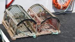 La saison de pêche au homard de la Gaspésie a été