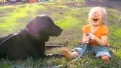 La bimba spruzza l'acqua al suo cane. La risata è irresistibile