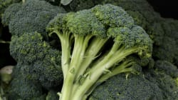 Tips For Growing Broccoli At