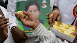 PHOTOS: A Giant Street Party Outside Jayalalithaa's Poes Garden