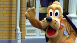 A Disneyland, Pluto envoie un enfant à l'hôpital à cause d'un