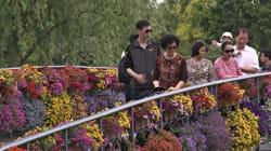 Un jardin pour sauver la Chine de la