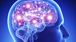 Notre cerveau est-il vraiment libre de ses