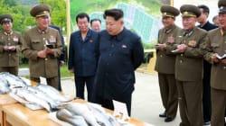 Le tartarughe per la zuppa non sono pronte e Kim Jong-un minaccia i dipendenti