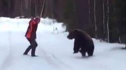 熊は声だけで追い払える(動画)