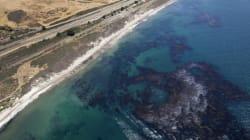 80mila litri di petrolio nell'Oceano Pacifico. Una tragedia di dimensioni