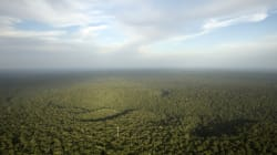 Cette expédition du CNRS en Amazonie fait passer Koh Lanta pour une promenade de