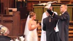Il surprend sa fiancé avec une chouette pour amener les alliances à leur
