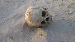 Human Remains Found Near
