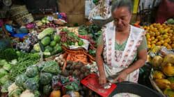 L'agricoltura ci salverà. La sostenibilità del cibo, dal Nicaragua a