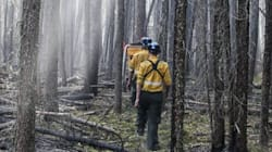 Alberta Wildfires Force Further Evacuations In