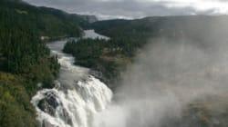 Forêts: des élus demandent de l'aide contre