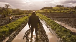 Expo e agricoltura: possiamo essere una generazione